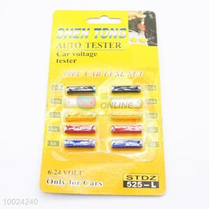 10 Pieces 6-24 Volt Car Fuse Set